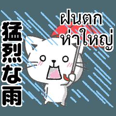 タイ語と日本語で雨・雨季のあるある大全集