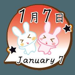 [LINEスタンプ] 1月7日記念日うさぎ