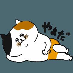 三毛猫の女子 part2
