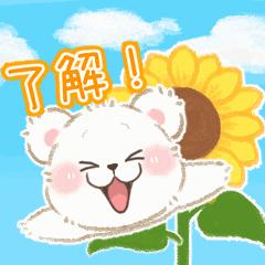 夏♪こぐまのしろっぷ2