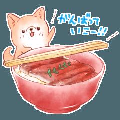 ぽちゃっと犬の日常スタンプ(夏)