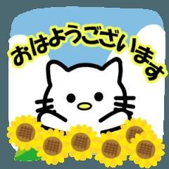 にゃんのスタンプ【夏限定Ver】