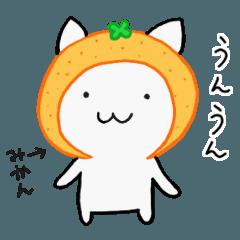 ネコとピヨ☆