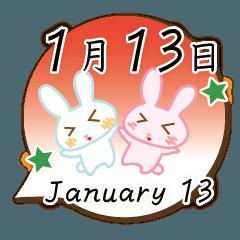 [LINEスタンプ] 1月13日記念日うさぎ