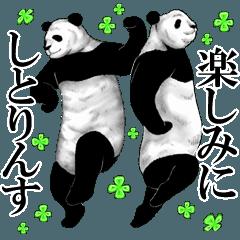 パンダのちょいズレ敬語