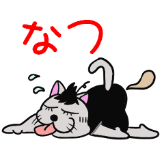 猫のポコタン~夏生活編~