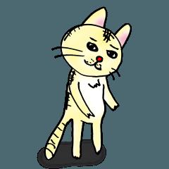 猫のセンタロウ先生