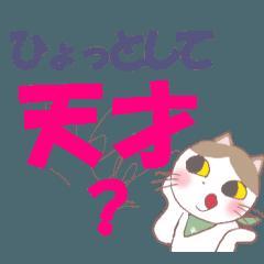 スタイネコのレン君(応援メッセージ)