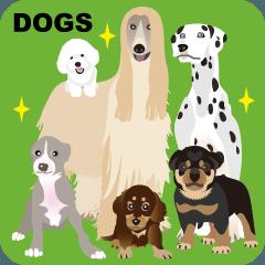 愛すべき 犬たち