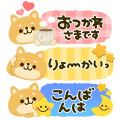 豆柴♡日和*コンパクトメッセージ