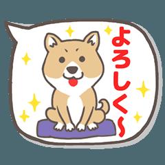 柴犬&秋田犬 豆柴と豆秋田の日常系と挨拶2