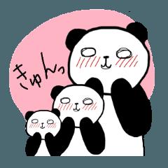 ぱんだ日和(0002)