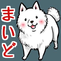 白犬たち3(ふわふわ関西弁どす)