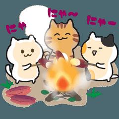 三匹の猫【夏の終わり~秋】