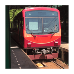 京都旅行あるあるある
