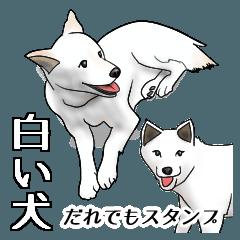だれでもスタンプ-白い犬-