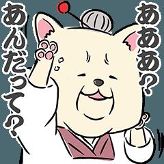 秋田犬のアキ山さん夫婦