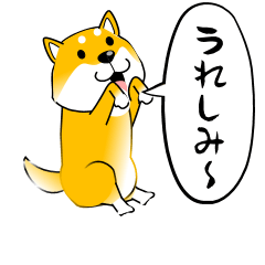 激しく尻尾をふる柴犬 【シンプル篇】