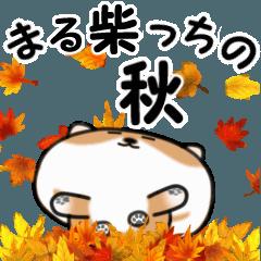 [LINEスタンプ] まる柴っちの秋