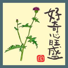 027 花+私が大切にしている言葉