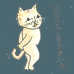 猫にゃんライフ