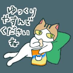 無愛想ネコと女の子3