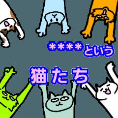名前を変えられる猫たち