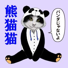 [LINEスタンプ] 熊猫猫(パンダじゃないよ)