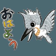 ヤマセミ山ちゃんⅡ