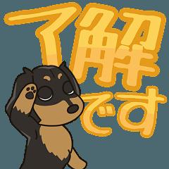 [LINEスタンプ] 動く!!ダックス大好きスタンプ◆黒タン1