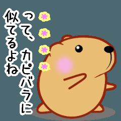 きゃぴばら【カスタム】