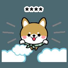 豆柴の毎日使える【カスタム】柴犬
