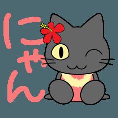 フラにゃん♥ハワイとフラダンスが好きな猫