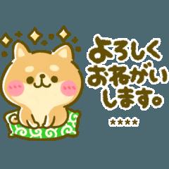 豆柴日和♡カスタム敬語