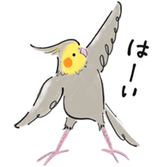 コトリヨガ[インコさんと文鳥さん]