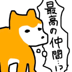 マルチーズと柴犬