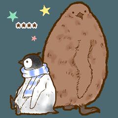 ☆オウサマペンギンコウテイペンギン☆