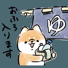 [LINEスタンプ] 生活する犬