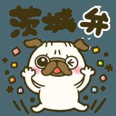 茨城弁♡パグさん