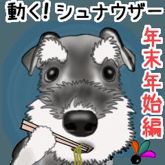 [LINEスタンプ] シュナウザー犬の年末年始スタンプⅡ